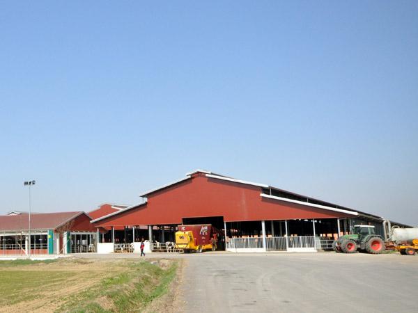 costruzione-rimesse-agricoltura-crema